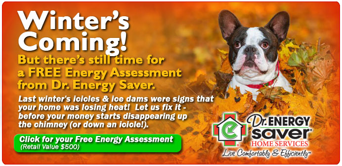 FREE Home Energy Audit